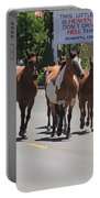 Running The Horses Portable Battery Charger