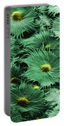 Russian Silverberry Leaf  Portable Battery Charger