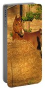 Rusty And Brown Sugar Portable Battery Charger