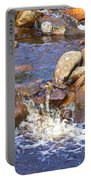 Rusty River Portable Battery Charger