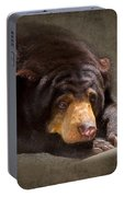 Sad Sun Bear Portable Battery Charger