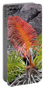 Sadleria Fern Hawaii Portable Battery Charger