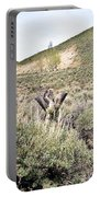 Sage And Pasture Portable Battery Charger