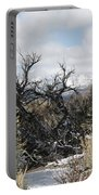 Sagebrush And Snow Portable Battery Charger