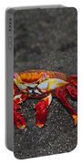 Sally Lightfoot Crab Portable Battery Charger