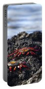 Sally Lightfoot Crabs Portable Battery Charger