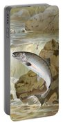 Salmon, C1900 Portable Battery Charger