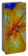 San Diego Hibiscus Study II Fireworks Portable Battery Charger