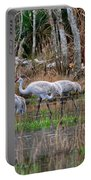 Sandhill Cranes In The Winter Marsh Portable Battery Charger