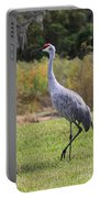 Sandhill In The Grass With Wildflowers Portable Battery Charger