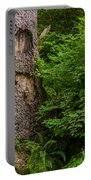 Sasquatch Rubbing Tree Portable Battery Charger