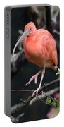Scarlet Ibis Portable Battery Charger