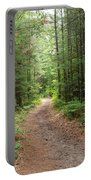 Scenic Walk Portable Battery Charger