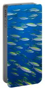 School Of Wide-band Fusilier Fish Portable Battery Charger