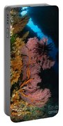 Sea Fans And Crinoid, Fiji Portable Battery Charger