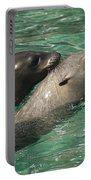 Sea Lions Portable Battery Charger