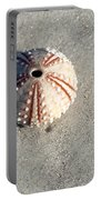 Sea Urchin And Shell Portable Battery Charger