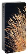 Seagrass In Gold Portable Battery Charger