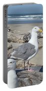 Seagull Bird Art Prints Coastal Beach Bandon Portable Battery Charger