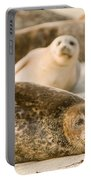 Seal 3 Portable Battery Charger