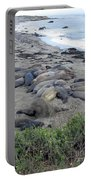 Seal Spa. Sand Bath Portable Battery Charger