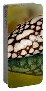 Seashell Wall Art 4 - Conus Marmoreus Portable Battery Charger