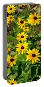 Season In The Sun Portable Battery Charger