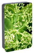 Sedum Droplets Portable Battery Charger