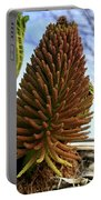 Seed Cone  Portable Battery Charger by Aidan Moran