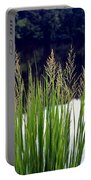 Seedy Grass Portable Battery Charger