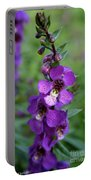 Serenita Purple Portable Battery Charger
