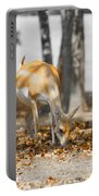 Shaded Grazing Portable Battery Charger