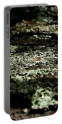 Shady Moss Portable Battery Charger