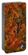 Sharbot Lake Tree 1 Portable Battery Charger
