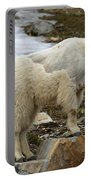 Shedding Mountain Goat Portable Battery Charger
