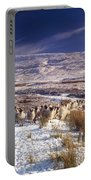 Sheep In Snow, Glenshane, Co Derry Portable Battery Charger