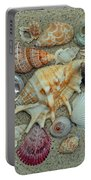 Shell Collection 2 Portable Battery Charger