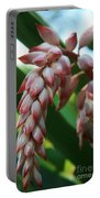 Shell Ginger Alpinia Zerumbet Tropical Flowers Of Hawaii Portable Battery Charger