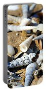 Shelly Beach Portable Battery Charger