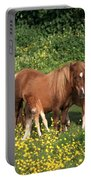 Shetland Pony With Foal Twins Portable Battery Charger