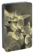 Shimmering Callery Pear Blossoms Portable Battery Charger
