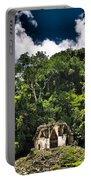 Shire Portable Battery Charger