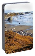 Shores Of Oregon Portable Battery Charger