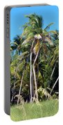 Shy Palms Portable Battery Charger