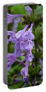 Siberian Catmint Portable Battery Charger