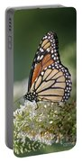 Side Profile Of A Monarch Portable Battery Charger