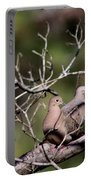 Siesta Time - Mourning Dove Portable Battery Charger