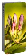 Sign Of Spring Portable Battery Charger