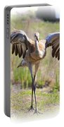 Silly Sandhill Crane Chick Portable Battery Charger