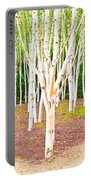 Silver Birch Trees Portable Battery Charger